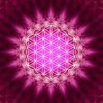 Spiritualität Profile Picture