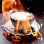 Akasha-Portal - Café Spirit Profile Picture