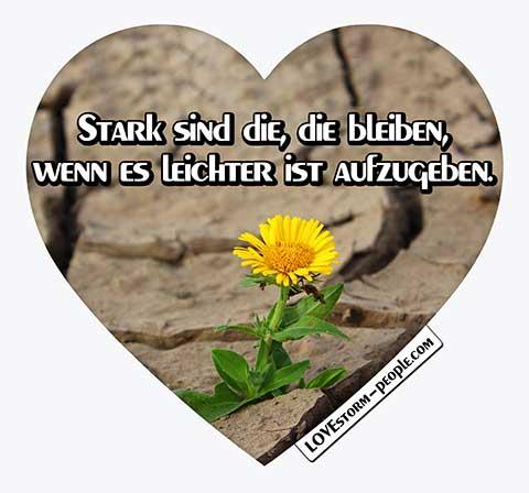 Lovestorm people Herz 0289