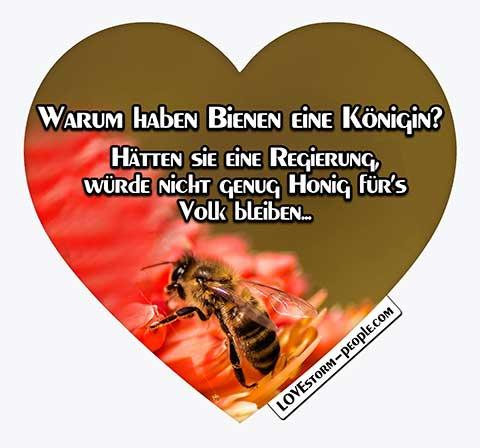 Lovestorm people Herz 0318